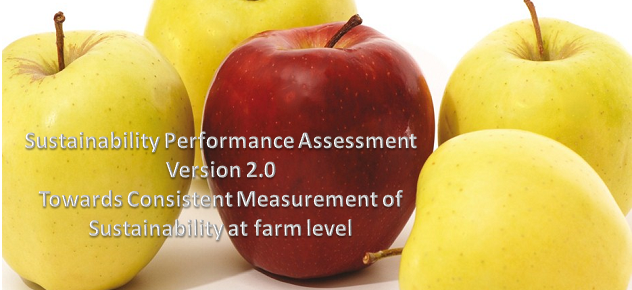 Sustainable Performance Assessment 2.0