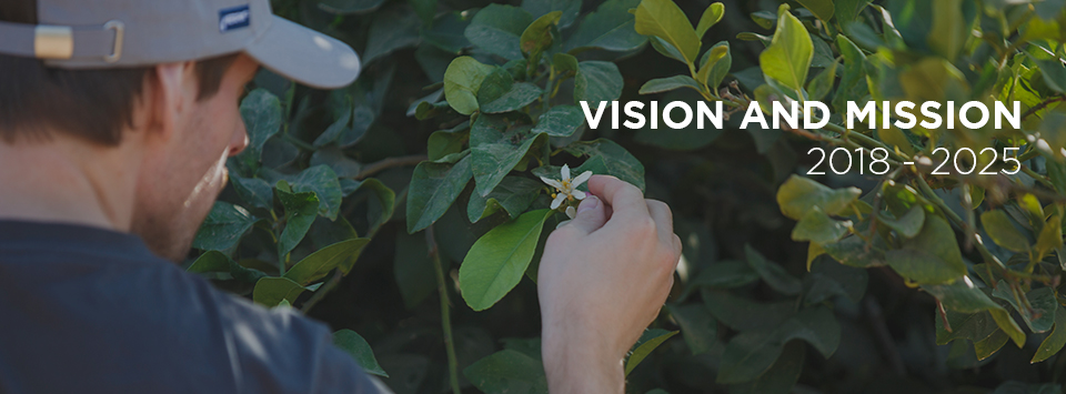 A New Vision and Mission