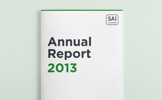Annual Report 2013 picture