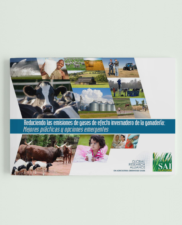 Reducing GHG Emissions from Livestock (Spanish) picture