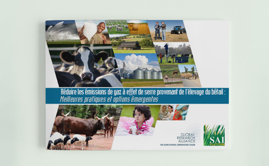 Reducing GHG Emissions from Livestock (French) picture