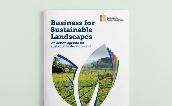 Report 'Business for Landscape' picture