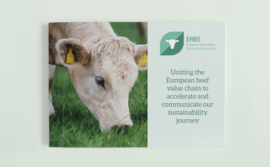 Brochure ERBS picture