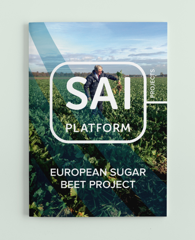 Case Study European Sugar Beet Project picture