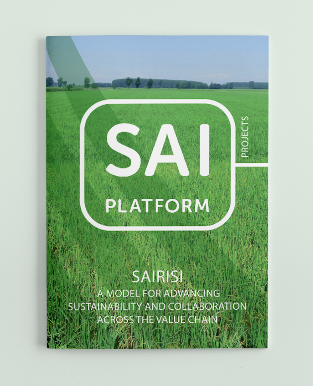 Case study SAIRISI, Italian Rice Project picture