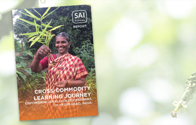 Sustainable Solutions Are Empowering Smallholders in India picture