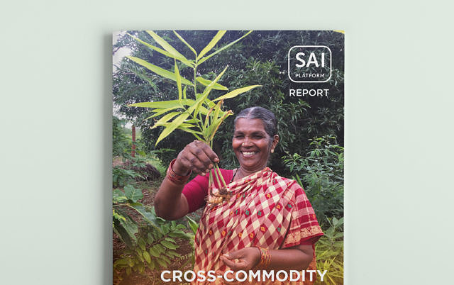 Report Learning Journey 'Empowering Smallholders in India' picture