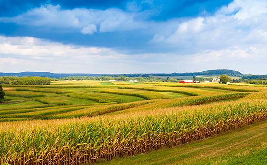 Harmonizing Solutions: Regenerative Agriculture picture