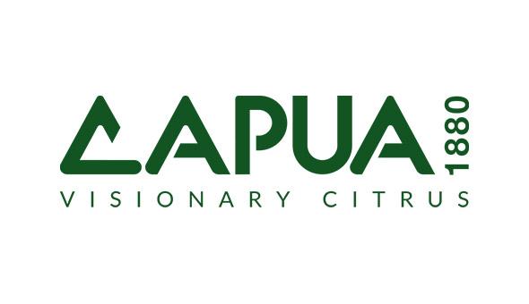 We welcome Capua 1880 as a new SAI Platform member picture