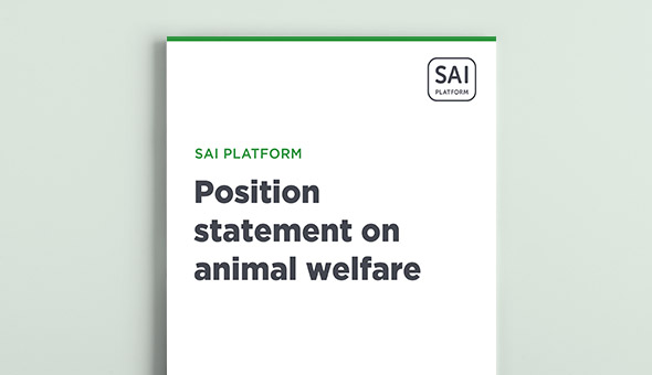 Position statement on animal welfare picture