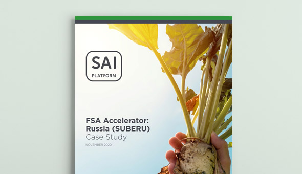 FSA Accelerator: Russia Project successfully accomplishes on-farm sustainability for the sugar-beet industry picture