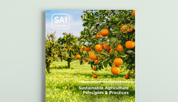 Sustainable Agriculture Principles and Practices: our tool to support companies in advancing sustainability picture