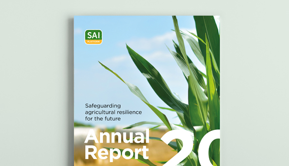 Annual Report 2020 picture