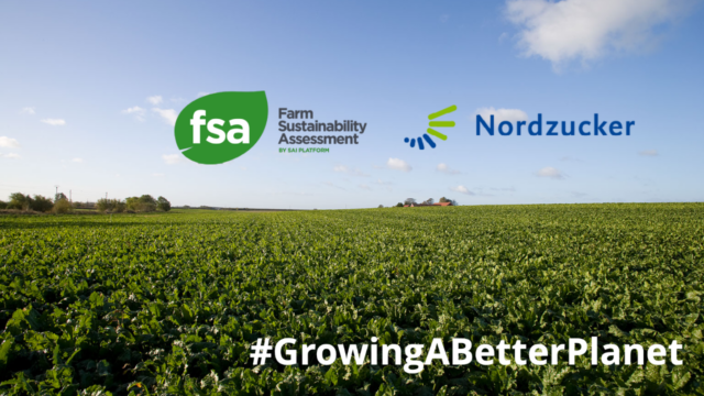 Growing a better planet: Nordzucker sugar beet leading the way in sustainable agriculture practices picture