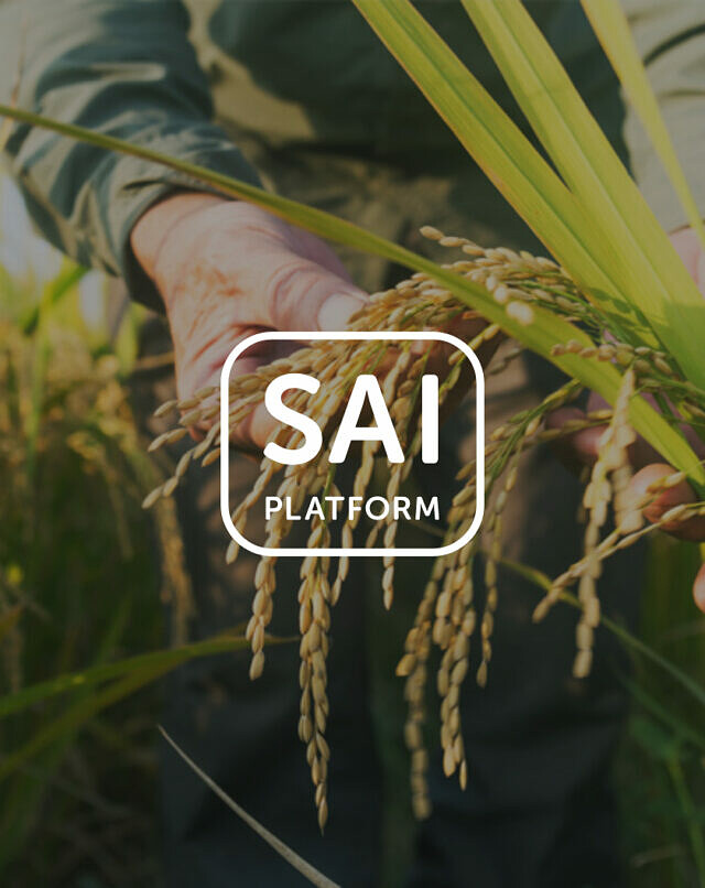 SAI Platform reaches collaborative power of 150 members picture