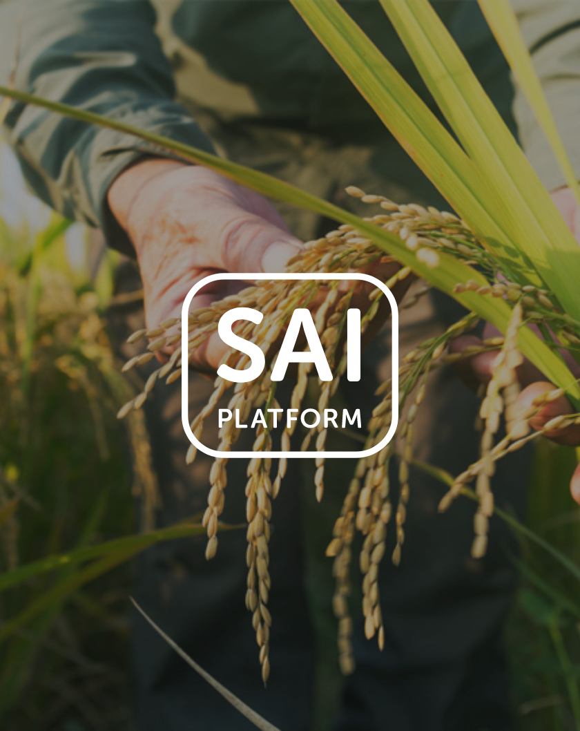 Join SAI Platform picture